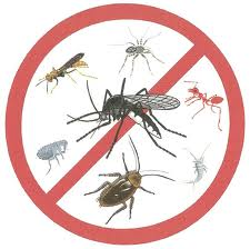 Comprar Insecticida