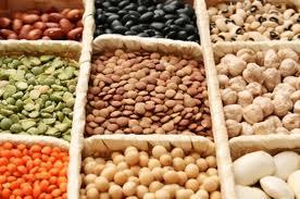 Comprar Alimentación Curativa para los Animales