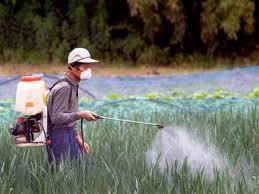 Comprar Pesticidas