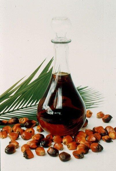 Comprar Acido graso de palma al 45%