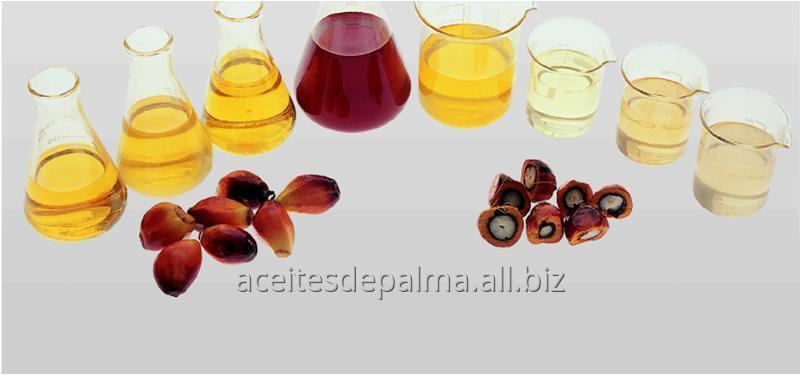 Comprar Aceite Crudo de Palma a Granel
