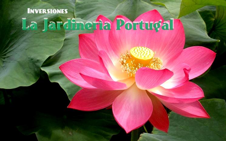 Comprar Inversiones La Jardineria Portugal c.a