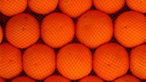 Comprar Zumo de Naranja