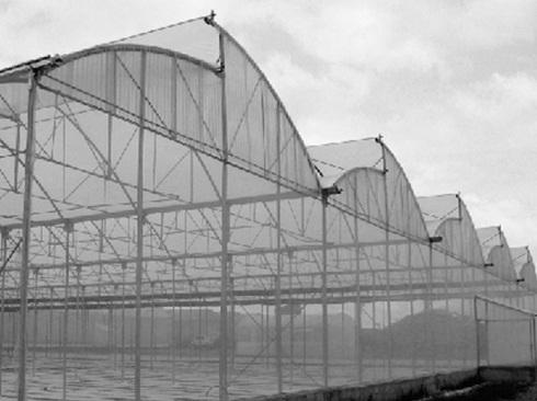 techos para invernaderos