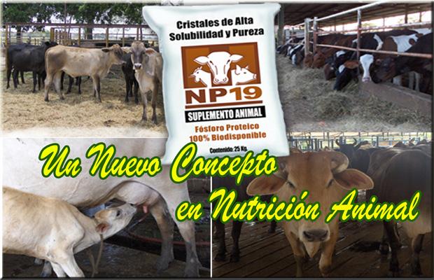 Comprar Suplementos para alimentación animal, NP-19