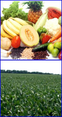 Comprar Estimulantes del crecimiento vegetal Bortrac