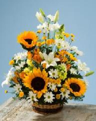 Ramos de flores, Alegria del jardin