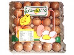 Los huevos de gallina