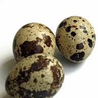 Huevos de Codorniz de Incubación