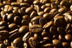 Café Crudo