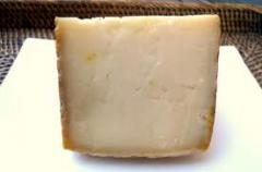 Equipo para fabricación de queso