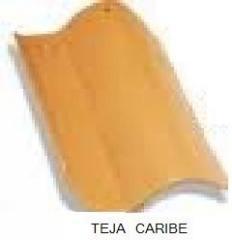 Teja tipo caribe