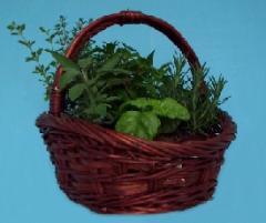 Cesta de Plantas Aromatocas y Medicinales