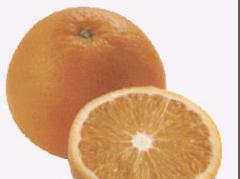 Concentrado de Naranja