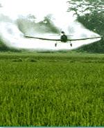 Aceite para Fumegacion Agricola