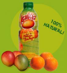 Jugo de mango con naranja