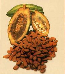 Granos de cacao, Río Caribe Natural