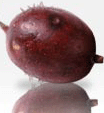 Fruta, La endrina