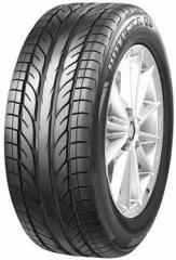 Neumáticos Potenza GIII
