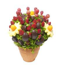 Arreglos de frutas, Chocomanzana