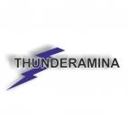 Herbicida, Thunderamina 860