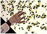 Contenedores para las tabletas