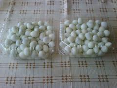 Huevos de Codorniz Cocidos
