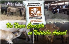 Suplementos para alimentación animal, NP-19