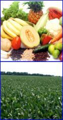 Estimulantes del crecimiento vegetal Bortrac