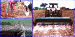 Fertilizantes Mallacien