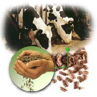 Aditivos biológicos para animales