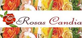 Rosa Candia, Empresa, San Antonio de los Altos