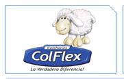 Corporación Colflex, C.A., Caracas