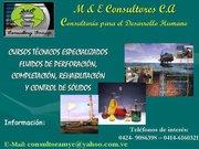 M&E Consultores,  C.A, Pariaguan