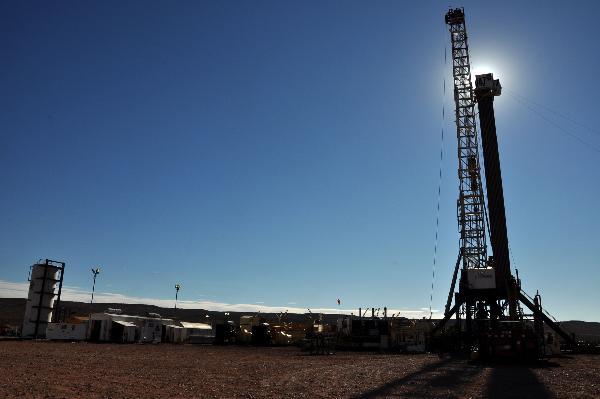 Pedido Desarrollo de yacimientos de petróleo y gas