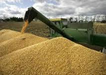 Pedido Servicios de Elaboración de Productos Agrícolas