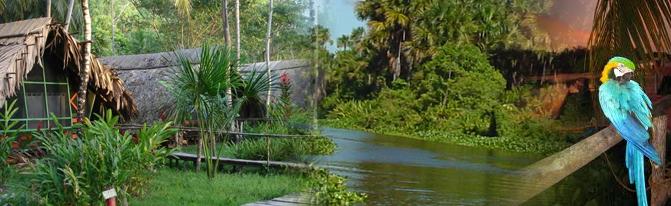 Pedido Excursión Delta del Orinoco + Parque Nacional Canaima