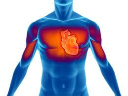 Pedido Tratamiento de las enfermedades cardiovasculares