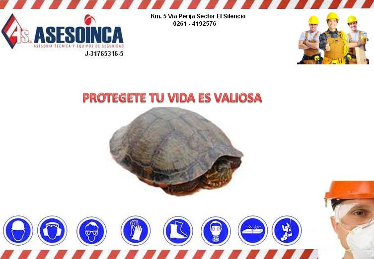 Pedido ASESOINCA, C.A