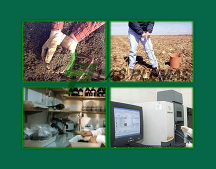 Pedido Analisis de suelo