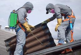 Pedido Remoción del techo de asbesto cemento