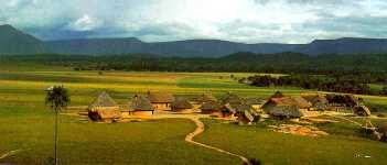 Pedido Parque Nacional Canaima