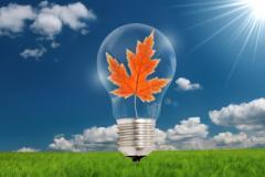 Distribución y la gestión de la energía