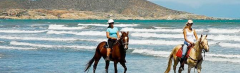 Excursión Paseo a caballo