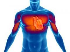 Tratamiento de las enfermedades cardiovasculares