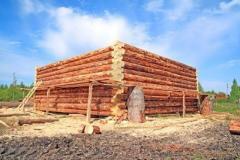 Construcción de edificios de madera