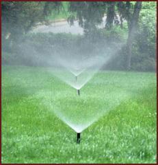 Proyección de sistemas de irrigación